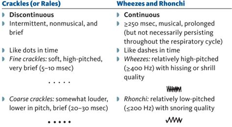 How To Document Lung Sounds how to document lung sounds search nursing