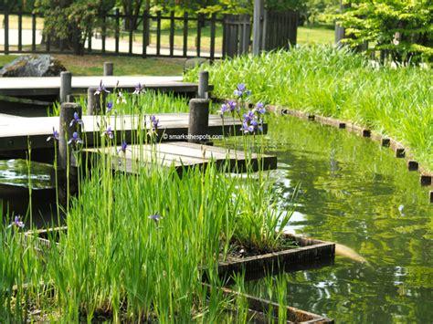 japanischer garten hasselt japanese garden of hasselt s marks the spots