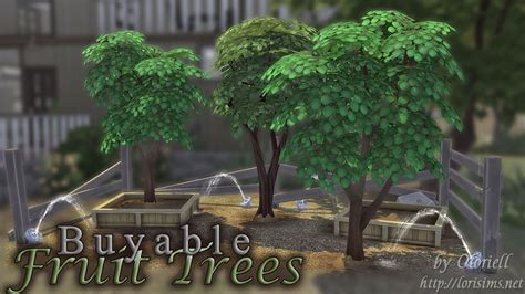sims 4 cherry tree mod the sims set of 6 buyable maxis fruit trees updated ver 2