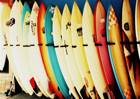 row row row your boat occult surfboards in a row surfing print poster sizes a4 a3 a2