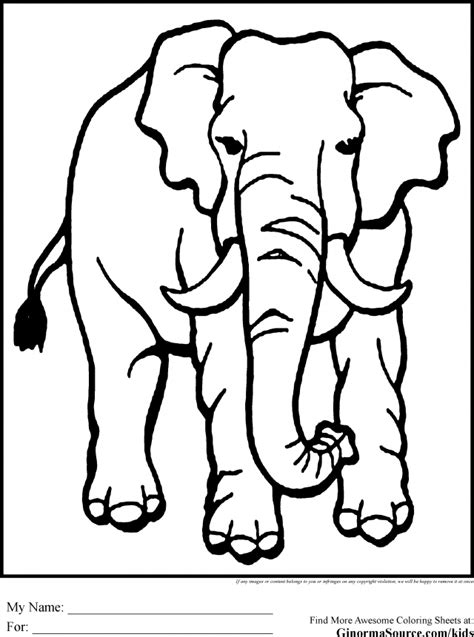 simple jungle coloring page wild animal coloring pages jungle animal coloring pages