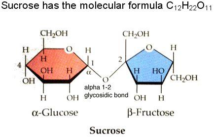 Table Sugar Formula by Glucose Motm 2007 Vrml Only Version