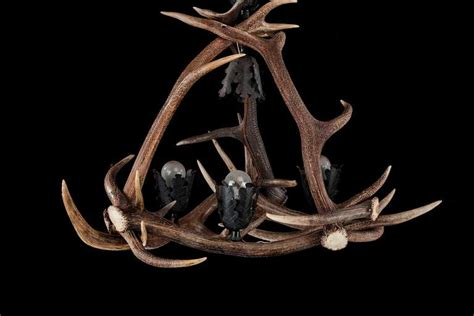 Stag Horn Chandelier Early 20th Century Stag S Horn Four Light Chandelier For Sale At 1stdibs