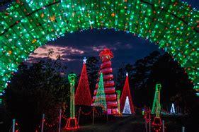 lights safari 2017 november 17 garvan woodland gardens lights 2017