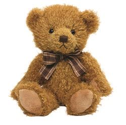 personalised teddy bear fenton small say it with bears