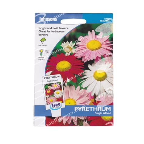 Benih Panah Merah Cabai Chilli Isi 50 Seeds benih pyrethrum single mixed 125 biji johnsons seeds