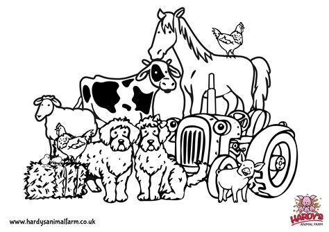farm coloring pages colouring pages hardys animal farm
