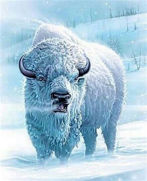 great white buffalo santa s white buffalo amp freinds