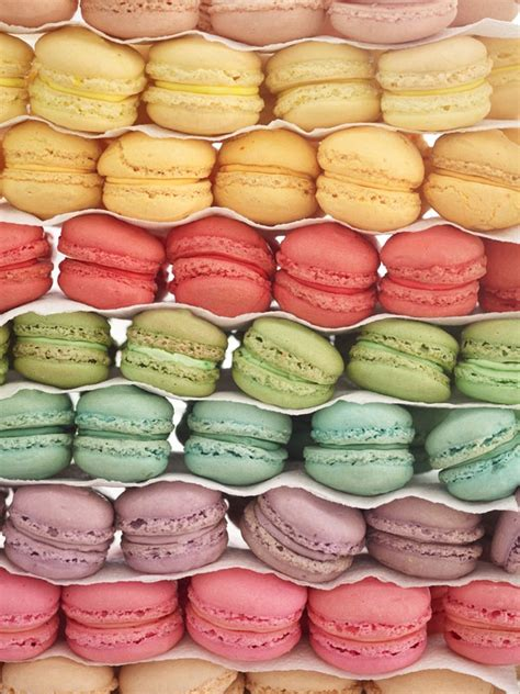 pastel macarons pattern oh macarons so sweet and colorful cupcake yummy