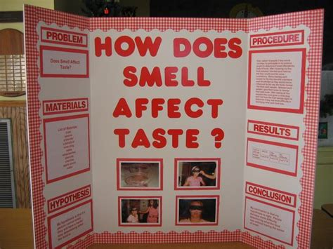 Pictures Of Science Fair Projects Description My Science Fair Project Poster