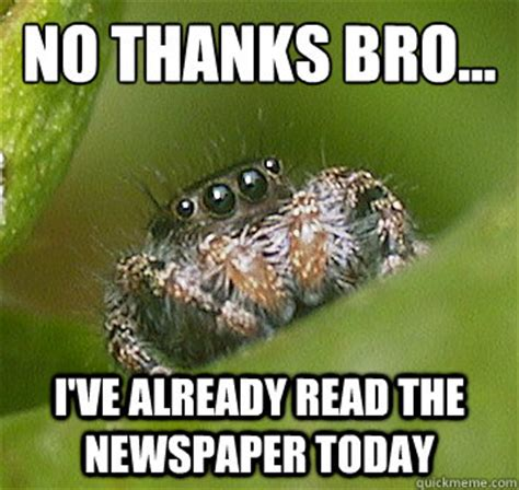 Spider Bro Meme - no thanks bro i ve already read the newspaper today