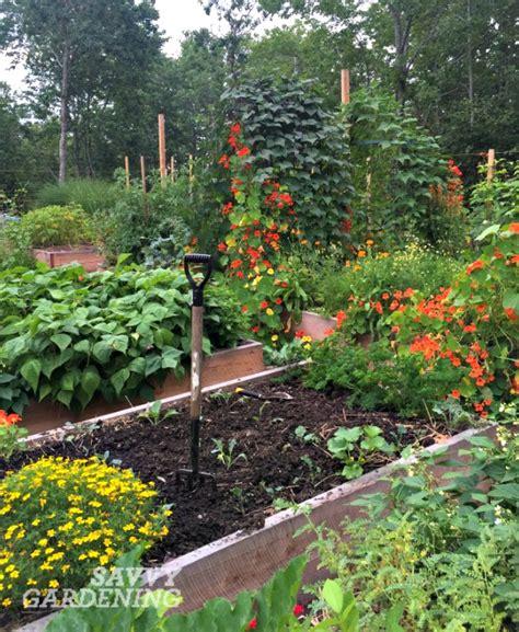 Garden Of Time by 5 Time Saving Gardening Tips For The Vegetable Gardener