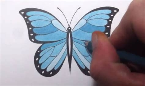 butterfly simple simple drawing of butterfly how to draw a butterfly