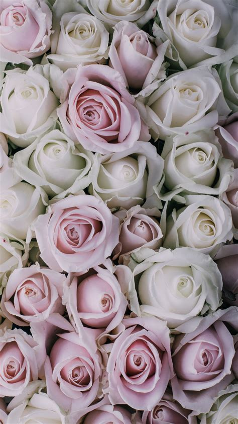 wallpaper for iphone roses vintage floral iphone wallpaper collection preppy wallpapers