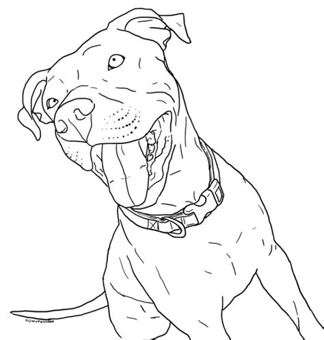 pitbull coloring page az coloring pages