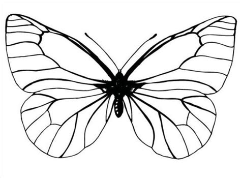 terbaru  gambar kupu kupu kartun hitam putih