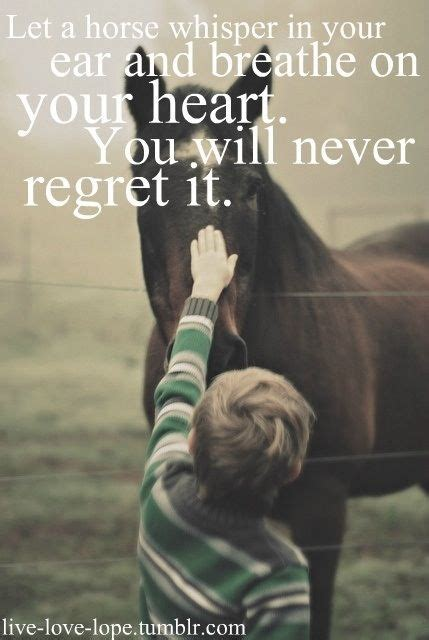 film love on a horse horses quotes barrel racing info video trainers