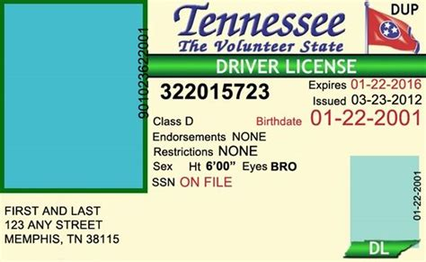 tennessee drivers license editable psd template