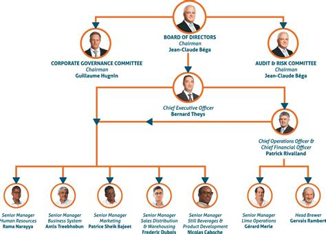 Organization Chart Of The Coca Cola Company What Is Coca Organisational Structure Of Coca Cola