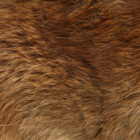 brown fur pattern 23 best images about textures animal skins on pinterest