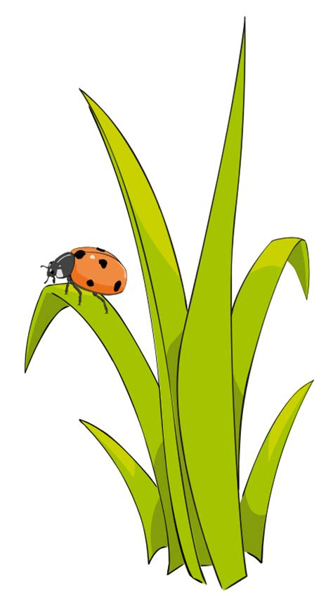 free to use clipart free grass clip pictures clipartix