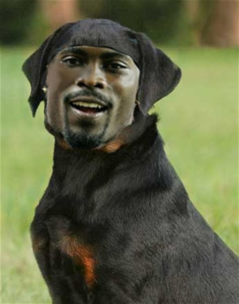 michael vick dogs don t tell me i can t rant 171 rockpile rant