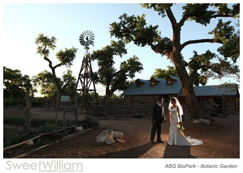 Albuquerque Botanical Gardens Wedding Botanic Garden Shark Reef Cafe Wedding 1 Sweet William Photo