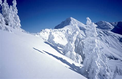 Alpen Urlaub Winter by Winterurlaub Im Pillerseetal In Tirol