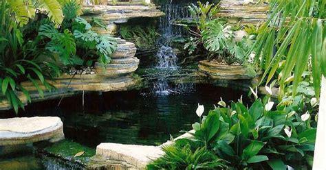 tutorial pembuatan kolam renang 4 tips pembuatan kolam ikan minimalis yang indah