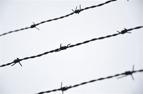 photo wire barbed wire image clipart best