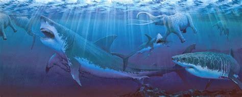 Gigi Ikan Hiu Gergaji Mengerikan Fakta Tentang Hiu Megalodon Yang Dikenal