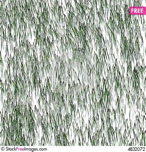 pine pattern stock pine needle pattern free stock photos images 4832072