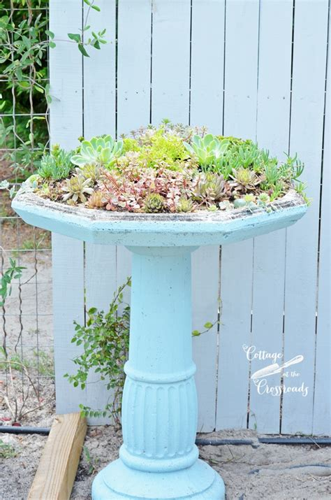 Who Were Planters by Succulent Birdbath Planter Cottage At The Crossroads