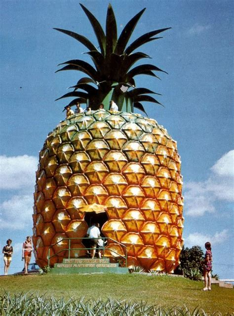 pineapple house a pineapple house in australia interesting sites pinterest pineapple australia and weird