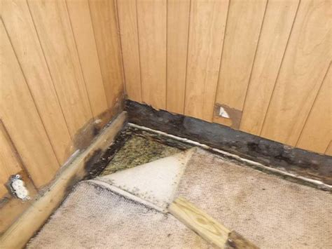 rugs that soak up water baker s waterproofing basement waterproofing photo album water soaking the carpet in