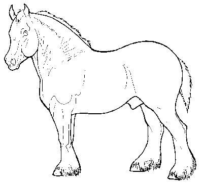 Draft Coloring Pages Draft Horse Coloring Pages Coloring Pages by Draft Coloring Pages
