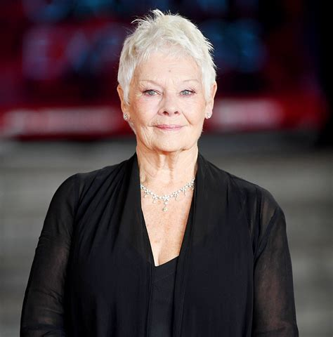 What Products To Use To Get Judi Dench Hair | what products to use to get judi dench hair judi dench