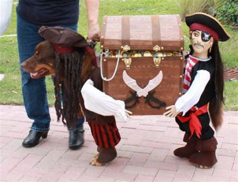 les meilleurs deguisements de chiens pour halloween