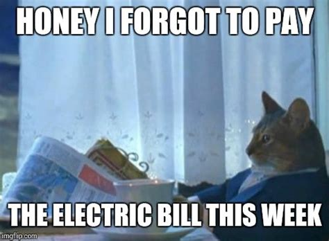 The Electric Meme - i should buy a boat cat meme imgflip