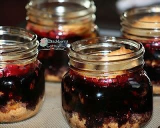 themes blackberry jar 17 best images about pie in a jar jar lids recipes on