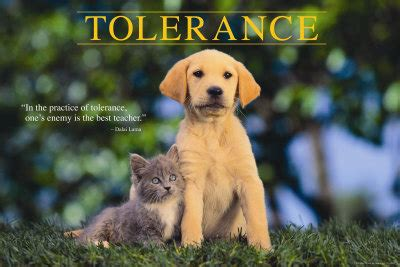 a need for tolerance | inner angels & enemies