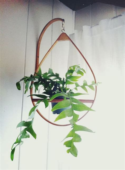 Hanging Plant Hangers - 1000 ideas about hanging planters on plant