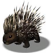 image cartoon porcupine png grimm wiki