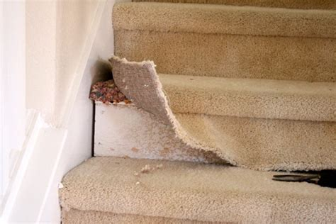 beautiful budget stair remodel from carpet to wood treads