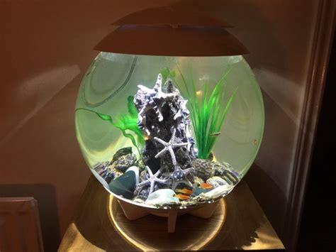 aquarium design centre glasgow biorb halo 30 led white watercenter