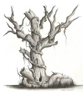 17 best images about dead tree pencil drawings on