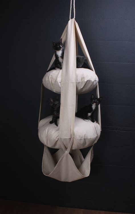 swing cat win a cat s trapeze cushioned cat swing from zoe pet