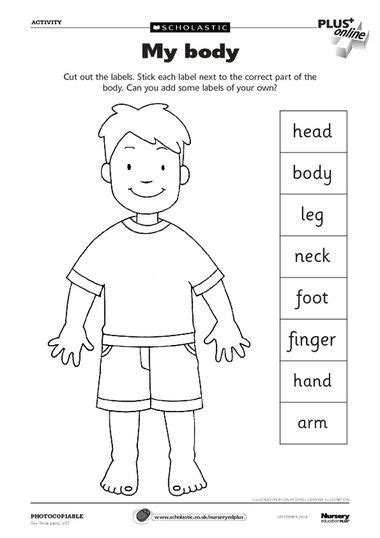 worksheets for preschoolers human body body parts worksheet can use as a dictionary to label