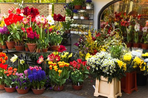 Florists Insurance   Aegis Insurance & Financial Services