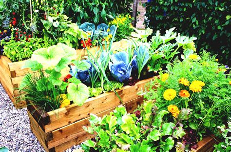 Simple Vegetable Garden Ideas For Your Backyard With Easy Vegetable Garden